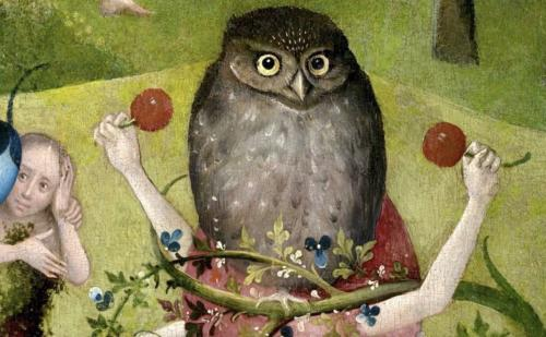Another of the 25 owls in the Bosch's works