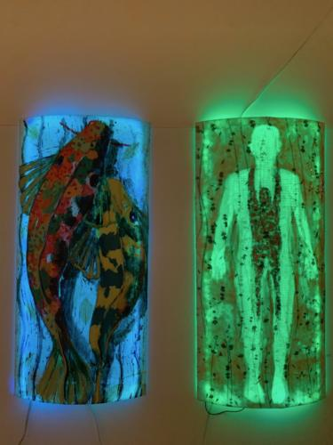 Luminaries Installations