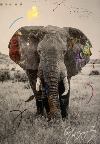 Tempo 10 by Arno Elias. Samburu, Kenya. Hand embellished photography.