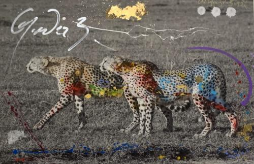 The Hunt, Cheetah, by Arno Elias.Hand painted Gold leaf and diamond dust. 42 x 30
